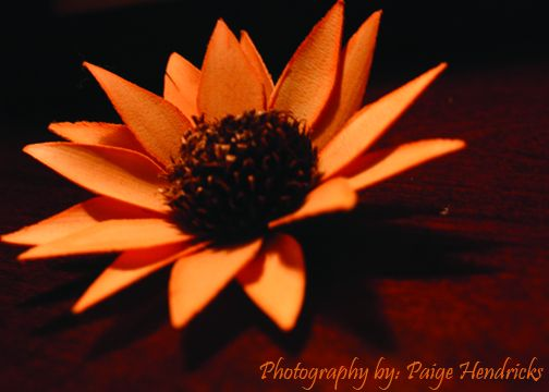 flower Paige